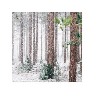 Árboles de pino Nevado Impresión En Lienzo