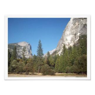 """""""Árboles en medio poster del valle de Yosemite de Fotografias"""