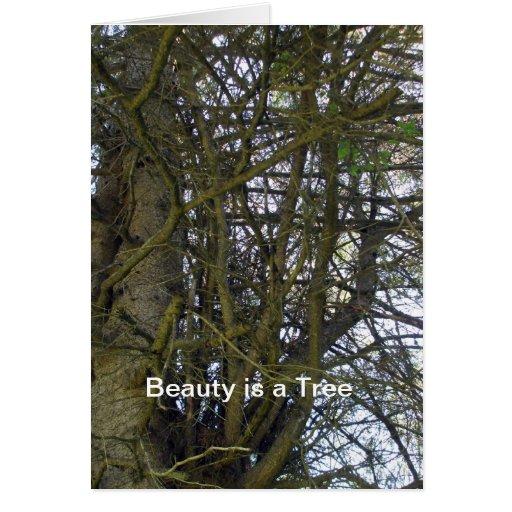 Árboles más viejos son hermosos - poema tarjeta