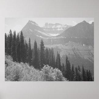 Árboles y poster negros y blancos de las montañas póster