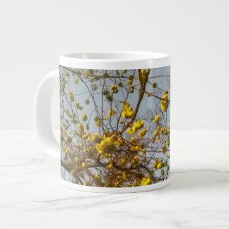 Arce en taza de la floración
