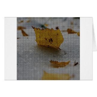 Arce tejido tarjeta de felicitación