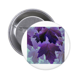 Arce violeta pins