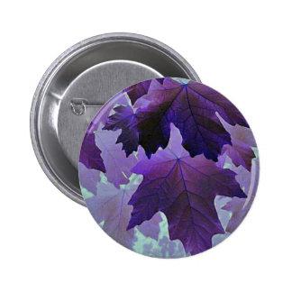 Arce violeta pin