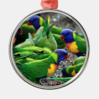 Arco iris australiano Lorikeets Adorno Navideño Redondo De Metal