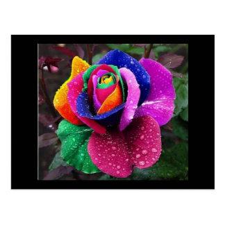 Arco iris subió postal