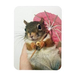 Ardilla con un imán del paraguas