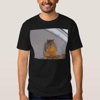 Ardilla de Fox Camiseta