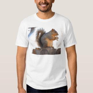 Ardilla de Fox Camisetas
