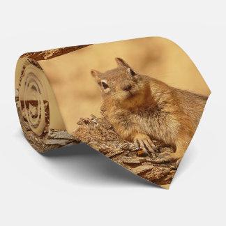 Ardilla de tierra linda corbata personalizada