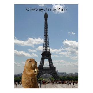 Ardilla en la postal de París