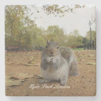 Ardilla gris Hyde Park Londres Posavasos De Piedra