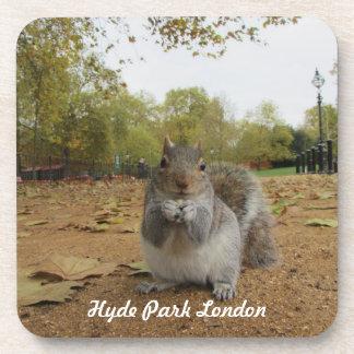 Ardilla gris Hyde Park Londres Posavasos Para Bebidas