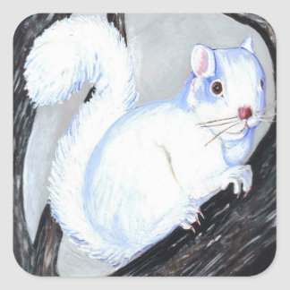 Ardilla hermosa del albino pegatina cuadrada