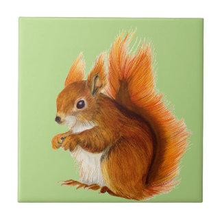 Ardilla roja pintada en arte de la fauna de la azulejo cuadrado pequeño