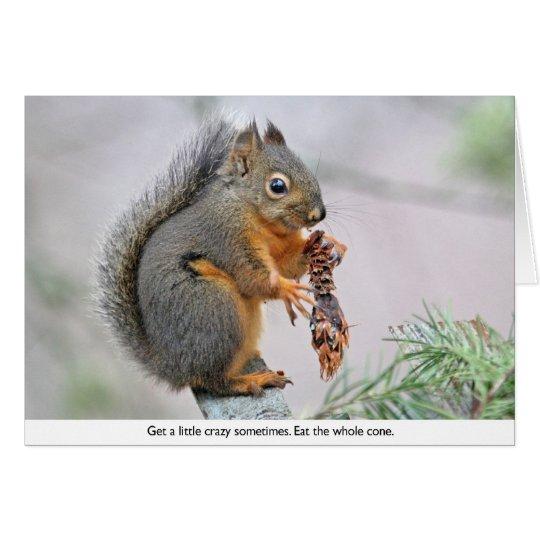 Ardilla sonriente que come el cono del pino tarjeta pequeña