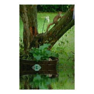 Ardilla verde que va en la reflexión del agua del papeleria