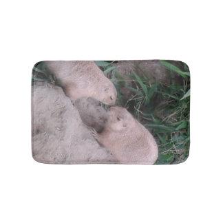 Ardillas de tierra en una alfombra de baño