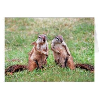 Ardillas gemelas tarjeta de felicitación