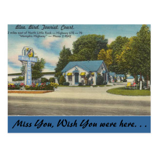 Arkansas, corte turística del pájaro azul tarjetas postales