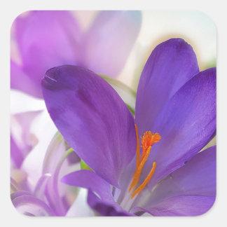 Arreglo floral del azafrán y del lirio de los pegatina cuadrada
