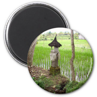Arroz de arroz, templo, Ubud Bali, Indonesia Imán