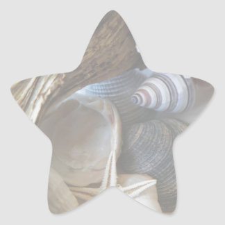 Arsenal de cáscaras pegatina en forma de estrella