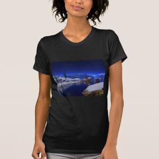 arte 3d el deshielo camisetas