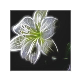 Arte blanco de la lona de la belleza