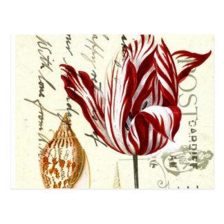 Arte botánico de los tulipanes florales elegantes postales