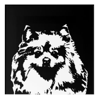 Arte de acrílico negro y blanco de Pomeranian de