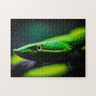 Arte de Digitaces de la serpiente 01 - Puzzle