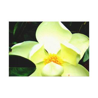 Arte de la pared del flor de la magnolia