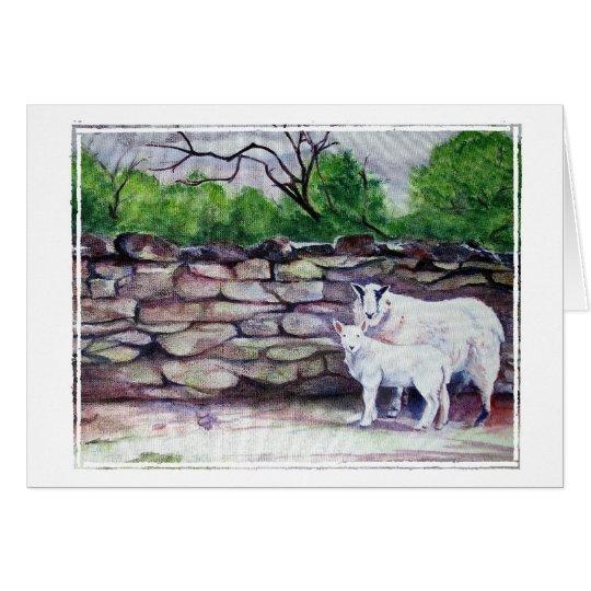 Arte de las ovejas de Cumbrian/pensamiento en Tarjeta Pequeña