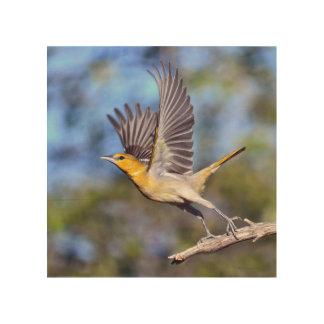 Arte de madera del pájaro
