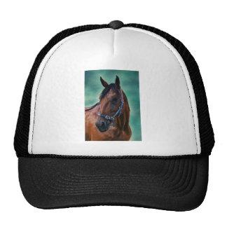 Arte del caballo de Tommy Standardbred Gorra