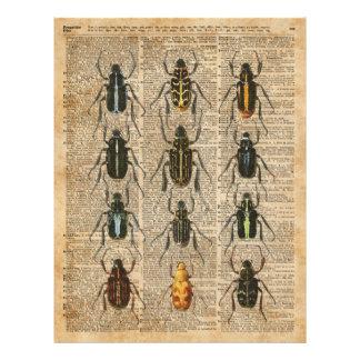 Arte del ejemplo del vintage de la zoología de los folleto 21,6 x 28 cm