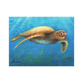 Arte del lápiz del color de la tortuga