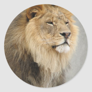 arte del león pegatina redonda