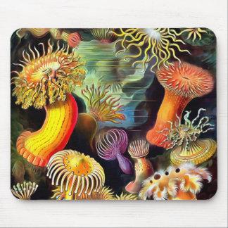 Arte del vintage de las anémonas de mar de Ernst Alfombrilla De Ratón