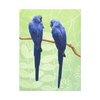 Arte envuelto dúo de la pared de la lona del Macaw