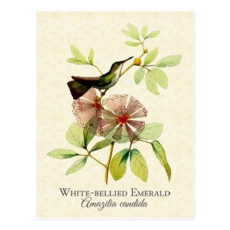 Arte esmeralda hinchado blanco del vintage del postal