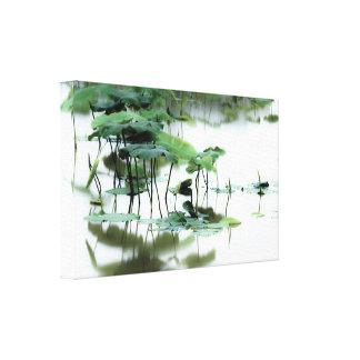 Arte fotográfico -5 del Fairyland de Lotus