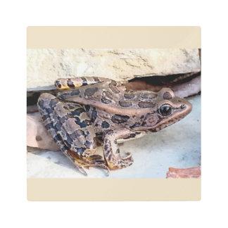Arte metalizado de la pared de la rana de leopardo