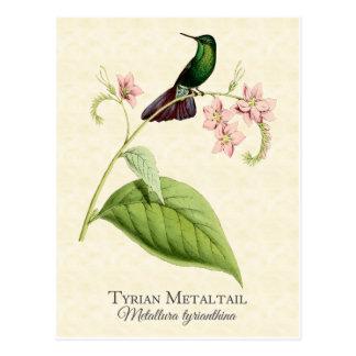Arte metalizado del vintage del colibrí de la cola postal