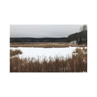 Arte neutral de la pared - paisaje del invierno