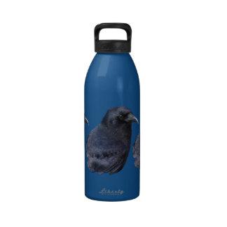 Arte pagano céltico del retrato místico del cuervo botellas de agua reutilizables