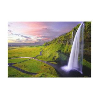 Arte verde claro colorido hermoso de la pared de