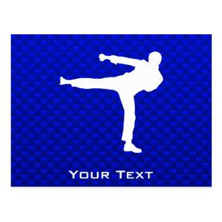Artes marciales azules postal