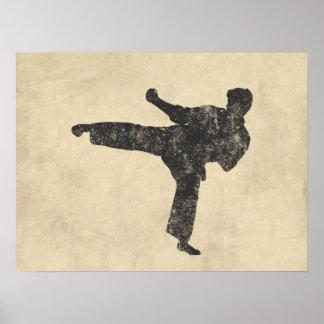Artes marciales póster